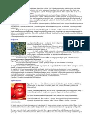 pikkelysömör kezelése a hagyomnyos orvoslattal keratitis pikkelysömör kezelésével