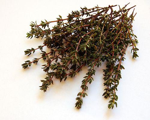 pikkelysömör kezelése timodepresszinnel kaktusz gyógyítja pikkelysömör